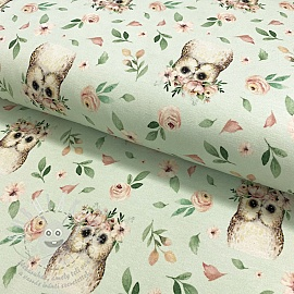 Jersey Nature owl mint digital print