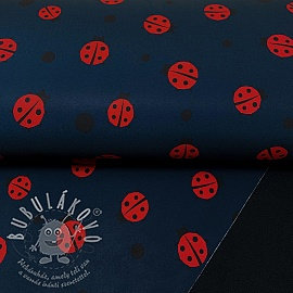 Softshell téli Lady Bug navy